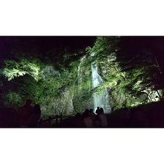 【tsunamayo9543】さんのInstagramをピンしています。 《#箕面の滝 の#ライトアップ ✨  食後の運動も兼ねて、 #滝 を見に行きました♪  滝までの道のりは片道40分 ... 結構ハード^^; でも着いた瞬間来てよかったーって(笑)なんか、すごいパワー貰えた気がします!! #大阪 #箕面 #大江戸温泉物語 #パワースポット #綺麗 #マイナスイオン #写真好きな人と繋がりたい #風景 #森 #山 #Japan #Osaka #minoh #falls #minohfalls #photography #일본 #오사카 #미노 #사진 #여행》