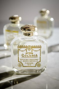 1000 images about perfume on prada salvatore ferragamo and fragrance