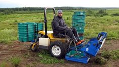 blueberry picker machine for sale
