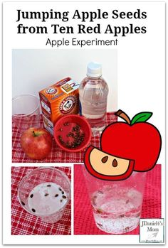 Jumping Apple Seeds from Ten Red Apples Apple Experiment for Kids of All Ages - Kids at home or students at school will love watching the chemical reaction in this STEM experiment. Preschool Apple Theme, Fall Preschool, Kindergarten Science, Preschool Learning, Preschool Apples, Science Experiments Kids, Science For Kids, Science Fun, Science Projects