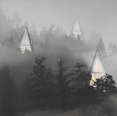 Rural Urbanism: Forest Community of One-Pole Tree Houses