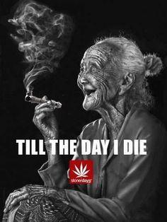 Buy Marijuana Online I Buy Weed online I Buy Cannabis online I Edibles Weed Humor, 420 Quotes, Medical Marijuana, Ganja, Stoner Humor, Stoner Art, Weed, Street Art Graffiti, Herbs