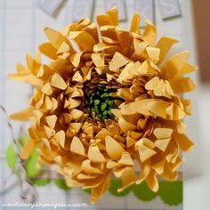 Chrysanthemum tutorial