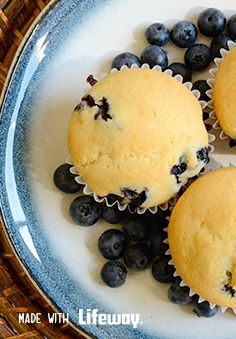 """Feed hungry mouths fearlessly with our healthy, Blueberry Lemon Kefir Muffins! These wholesome, kid-approved delights are super simple to make, and """"boxed mix-free,"""" meaning they're a treat you can feel good about. Kefir Recipes, Baking Recipes, Dessert Recipes, Desserts, Muffins Blueberry, Blue Berry Muffins, Lemon Muffins, Banana Yoghurt Bread, Goat Milk Recipes"""