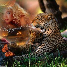 Tess - Exotic Wildlife