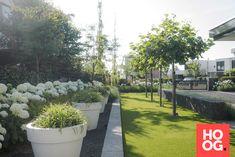 Palm Springs Houses, Modern Backyard, Garden Architecture, Contemporary Garden, Back Gardens, Front Yard Landscaping, Dream Garden, Garden Inspiration, Beautiful Gardens