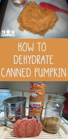 Swimming in canned pumpkin or freezer bags full of pumpkin puree? Here's how to dehydrate your canned pumpkin puree and make pumpkin powder! Dehydrator Dog Treats, Dehydrator Recipes, Canned Pumpkin, Pumpkin Puree, Spanish Chickpea Recipe, Preserving Pumpkins, Preserving Food, Preserve Pumpkin, Survival Food