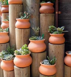 - Whether building new or redesigning an existing backyard, garden planters make elegant and functional decor elements to create a customized oasis. With hundreds of creative options, you don't need … Cacti And Succulents, Planting Succulents, Planting Flowers, Diy Planters, Garden Planters, Outdoor Planters, Balcony Gardening, Outdoor Decor, Pot Jardin