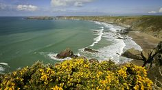 Beautiful Marloes is on the very western edge of Pembrokeshire © Crown Copyright (2015) Visit Wales
