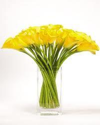 Yellow calla lilies arrangement
