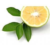 #Bergamot_Bergaptene-free_essential_oil is wonderful to incorporate in cosmetic applications, personal care formulations, soaps, aromatherapy, and perfumery.