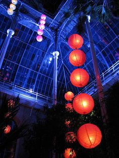 Chinese Lanterns by Dan__H, via Flickr
