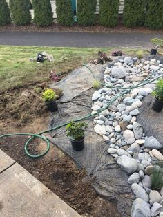 29 rock garden and backyard ideas landscaping for make you happy 13 - garden landscaping Dry Riverbed Landscaping, River Rock Landscaping, Landscaping With Rocks, Front Yard Landscaping, Landscaping Ideas, Back Gardens, Outdoor Gardens, Yard Drainage, Drainage Ideas