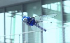 bionicopter-robot-dragonfly-7