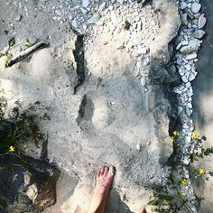 Get electrolytes; place your feet to the ground <> #grounding#nature#barefoot#planetearth#feet#spirituality#paradigmshift