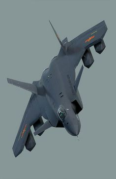 J-20,,,,,Just Awesome !!!!!     ;-)