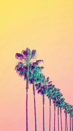 ilera de palmeras en degrade
