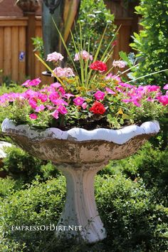 Garden Art Birdbath Planter Old bird baths make great planters! See the gallery of ideas for your garden.Old bird baths make great planters! See the gallery of ideas for your garden. Container Flowers, Flower Planters, Container Plants, Garden Planters, Container Gardening, Flower Pots, Evergreen Container, Outdoor Planters, Flower Ideas