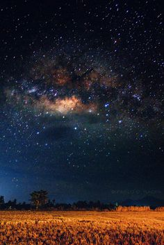 Field Of Dreams: The Brightest Portion Of The Milky Way