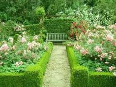 rose garden design. Image result for nz native garden design ideas Simple Design Ideas Rose Garden Plans  flowers Pinterest