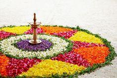 Discover Onam: Harvest Festival of Kerala