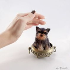 Yorkshire Terrier  Custom Realistic Needle Felted Dog / by YanArt, $150.00