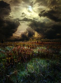Nowhere Land | Phil Koch