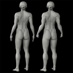 Muscle-Rigged Base Figure in 3D CG.