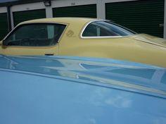 Pontiac firebird esprit yellowbird 1981