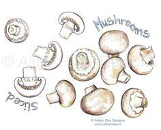 Food illustration - Mushrooms by Alison Day