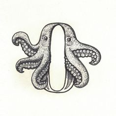 OCTOPUS: They have three hearts & four pairs of arms (unlike this one).