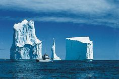Iceberg Alley in Newfoundland Newfoundland Canada, Newfoundland And Labrador, St Anthony Newfoundland, Newfoundland Icebergs, O Canada, Canada Travel, Alberta Canada, Costa, Largest Countries