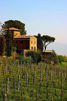Landschap Orvieto, Italië. www.tendi.nl/italie