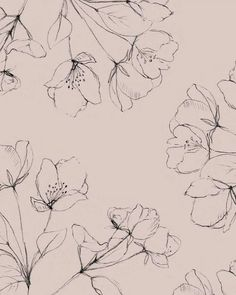 There is another craze is to draw patterns, flowers, mandala patterns in ink. Pattern Illustration, Botanical Illustration, Botanical Art, Flower Pattern Drawing, Flower Patterns, Plant Drawing, Floral Illustrations, Of Wallpaper, Line Art