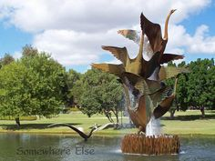 Swan Fountain in Burswood Park - really lovely walk along the Swan River. Perth Western Australia, Future Travel, Tasmania, Water Features, Travel Around, Amazing Photography, Adventure Travel, Countryside, The Good Place
