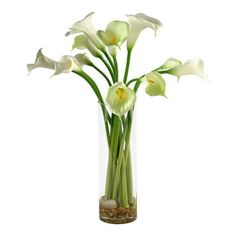 "D&W Silks - Artificial Calla Lilies in Tall Glass Vase - It's amazing how much adding a plant can change the look of a room or decor, but it can be difficult if your space is not conducive to growing plants, or if you weren't exactly born with a ""green thumb."" Invite the beauty of nature into your home without all the upkeep with this maintenance-free, allergy-free arrangement of artificial calla lilies in a tall glass vase. This is not a living plant."