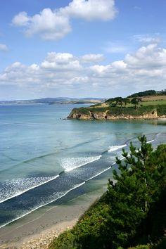 Découvrez la plage du Ris de Douarnenez et sa riche végétation !  #plage #ris #Douarnenez