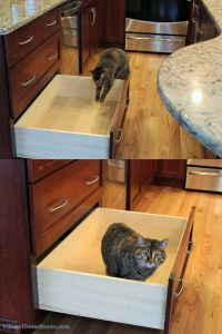 Someone tell this adorable photobomber that this stack of #drawers is for pots and pans.   |   VillageHomeStores.com
