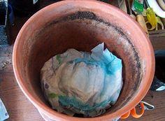 Viete, v akej symbióze môžu existovať použité detské plienky a muškáty? Ako sa dá rozmnožiť ruža pomocou jačmenného semienka?  Je možné vypestovať zemiaky v kope sena? Máme odpovede.