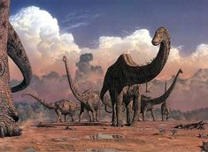 Another famous Mark Hallett with Sauropods. Too bad it has the feathered theropods in the foreground. The sauropods look a little sickly.