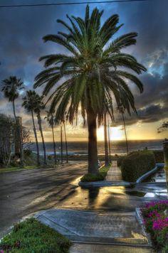 sunset after the rain at Sunset Cliffs                    San Diego, CA   photo: Freddy Fox Macdonald  http://freddyfoxphotography.com