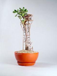 L'artiste Jedediah Corwyn Voltz, qui vit et travaille à Los Angeles, a commencé son concept d'habitations miniatures pour plantes d'intérieur nommées « Som