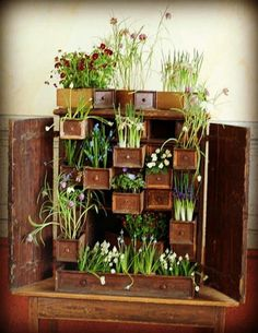 Spring display? velcro boxes/pots to the wall, kids can decorate flowers to put in..?