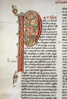 Catalogue reference: MS. Laud Misc. 293 Object: parchment manuscript [? England] Author: Peter Lombard Title: Commentary on St. Paul's Epistles Date: early 13th century Image description: Detail. Top left of the page. Arabesque initial 'P(avlus)' with foliated motifs in red and green ink.The Bodleian Library Medieval and Renaissance Manuscripts