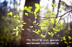 {Project 52: 18/52}  When you let go of who you are,  you become what you might be.  - Lao Tzu