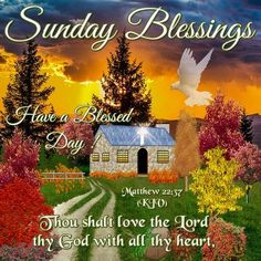 Good Morning Quotes : Good Morning Everyone, Happy Sunday. I pray that you have a safe and blessed day. - Quotes Sayings Happy Sunday Images, Happy Sunday Quotes, Happy Sunday Everyone, Blessed Quotes, Good Morning Everyone, Morning Images, Sunday Pictures, Daily Pictures, Happy Thursday