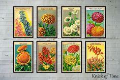 Obter o Look {Antique Prints Farmhouse sementes pacote}
