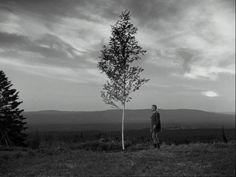 The Virgin Spring (Jungfrukällan) dir. by Ingmar Bergman, 1960 / Cinematography by Sven Nykvist