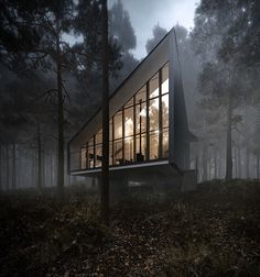 Arch Visualisation | My personal CG work inpired by House to catch the forest / Tezuka Architects.