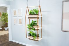 Home And Family Crafts, Home And Family Tv, Home And Family Hallmark, Garden Crafts, Diy Crafts, Diy Hanging Planter, Leather Dye, Plant Holders, Ladder Decor